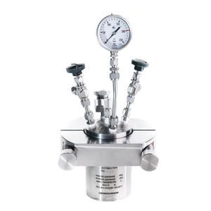 Réacteur haute pression RVD-2-250